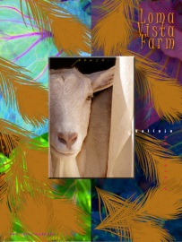 FARM-poster4_sm