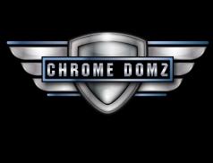 CHRMDMZlogo3